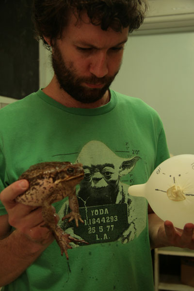 Ben comparing Cane Toad to a model.