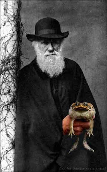 Darwin with toa