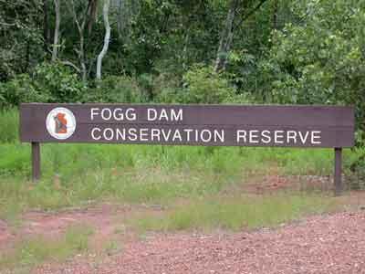 Welcome to Fogg Dam