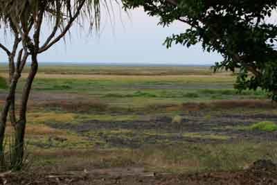 Fogg Dam - flood plain