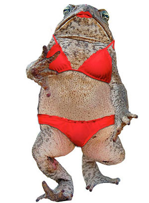 Super sexy toad
