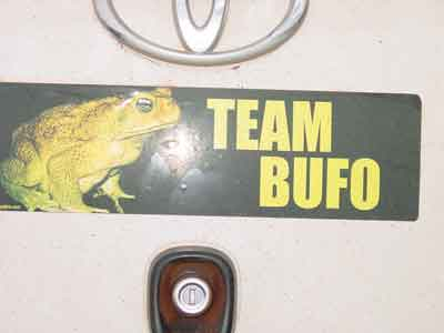 Team Bufo bumper sticker