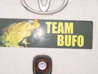 Team Bufo bumper sticker