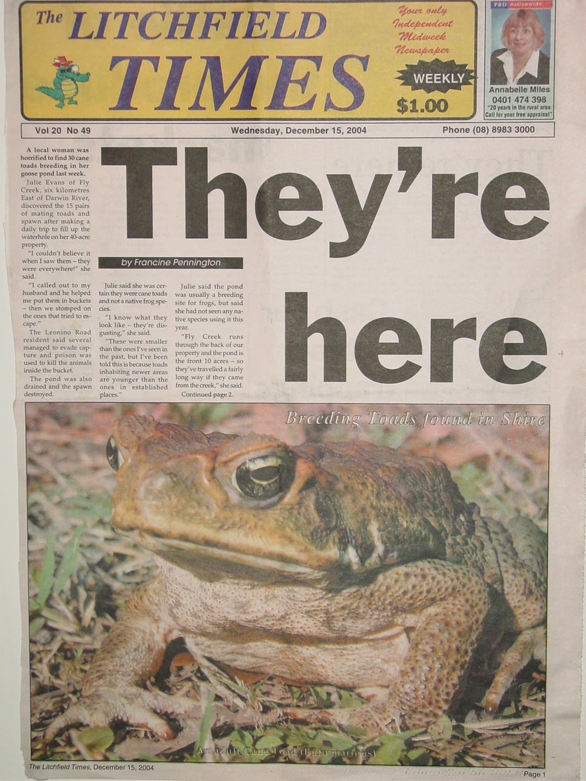 Newspaper report about Cane Toads